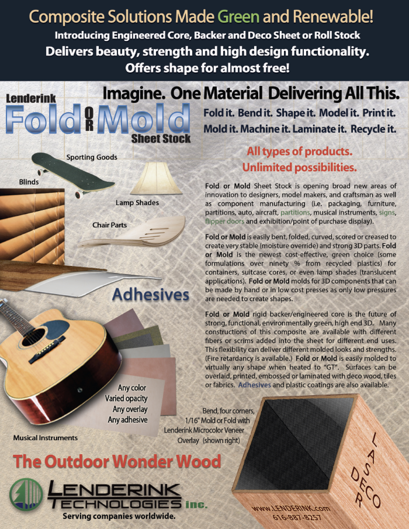 Fold or Mold Flyer