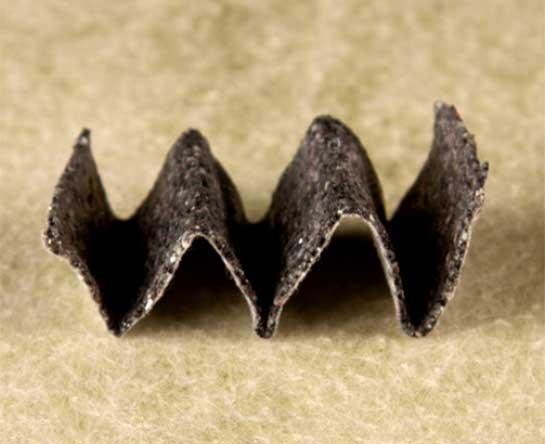 Fold-or-Mold5